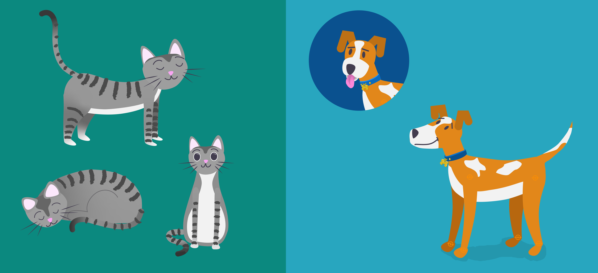 Cat and Dog Designs